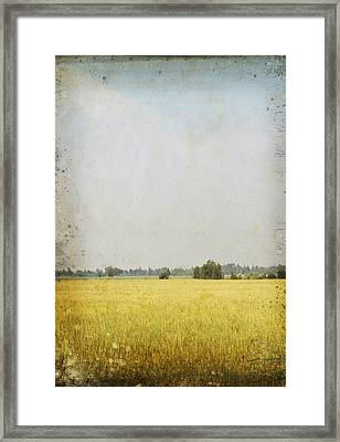 Nature Painting On Old Grunge Paper Framed Print