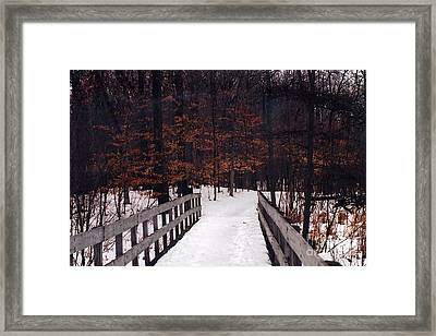 Nature Path In The Woods - Michigan Fall Nature Landscape Framed Print