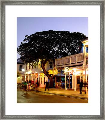 Nature Within The City Framed Print by Karen Wiles