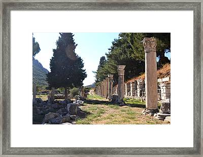 Natured Ruins  Framed Print by Courtney Dyer