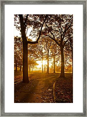 Nature's Alarm Clock Framed Print by Michael Murphy