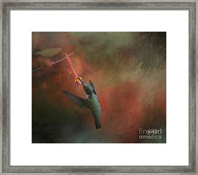Nature's Angel Framed Print by Cris Hayes