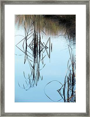 Framed Print featuring the photograph Nature's Art by I'ina Van Lawick