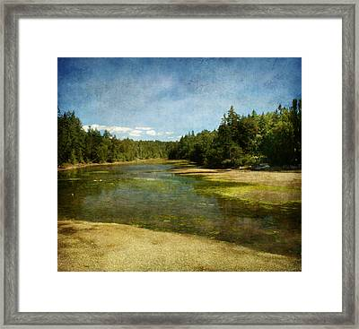 Natures Beauty Framed Print by Terrie Taylor