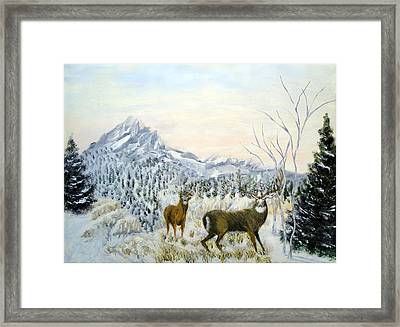 Nature's Creations Framed Print