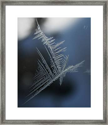 Natures Crystal Framed Print