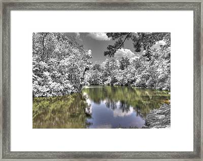 Nature's Dream Framed Print by David Troxel
