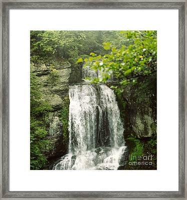 Nature's Essence Framed Print by Thomas Luca