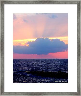 Nature's Fireworks Framed Print