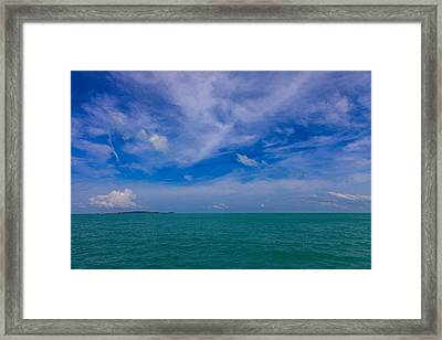 Natures Gems Framed Print