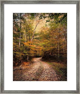 Nature's Harmony Framed Print by Jai Johnson