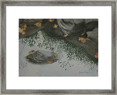 Nature's Mirror Framed Print by Heather Perez