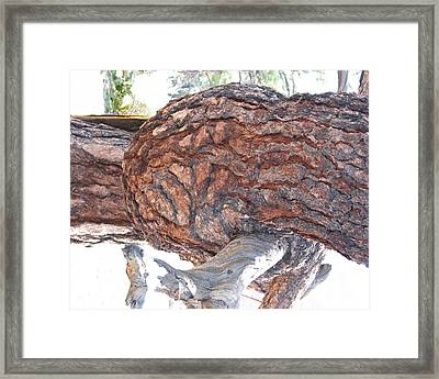 Nature's Natural Abstract Art Framed Print by Merton Allen
