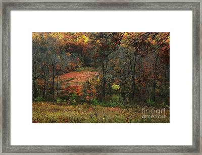 Nature's Paints Framed Print