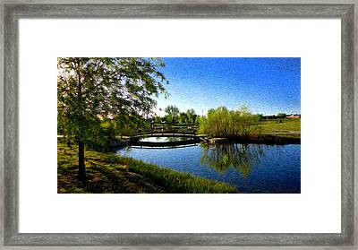 Nature's Reflection Framed Print by Sergio Aguayo