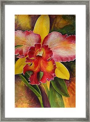 Natures Splendor Framed Print