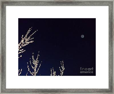 Nature's Watchful Eye Framed Print by Doug Kean