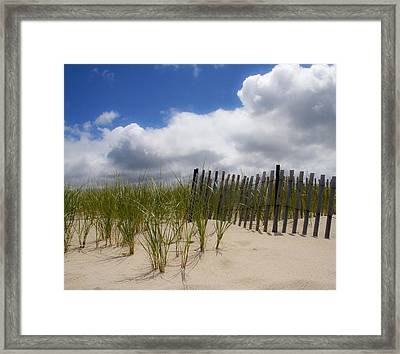 Framed Print featuring the photograph Nauset Dune by Michael Friedman