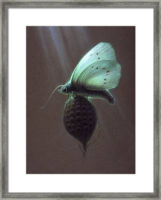 Framed Print featuring the painting Nausithous by Shawn Kawa