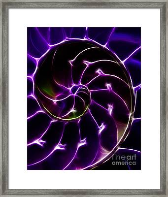 Nautilus Shell - Electric - Purple Framed Print by Wingsdomain Art and Photography