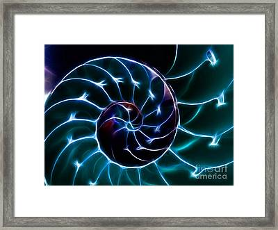 Nautilus Shell - Electric - V2 - Cyan Framed Print