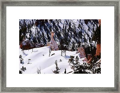 Navajo Loop Trail Framed Print by Viktor Savchenko