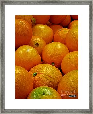 Navel Oranges Framed Print by Methune Hively