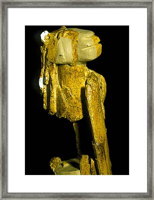 Neanderthal Carving Of A Man With A Lion's Head Framed Print