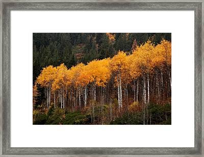 Near Leavenworth Wa Framed Print