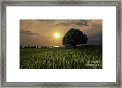 Near Paradise  Framed Print