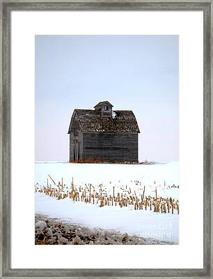 Nebraska Barn In Winter Framed Print by Christine Belt