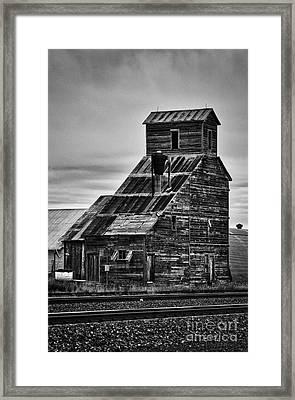 Nebraska Grain Elevator Framed Print by David Waldrop