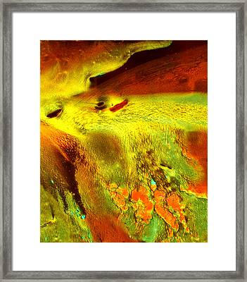 Nebula Rising Framed Print by Colleen Cannon