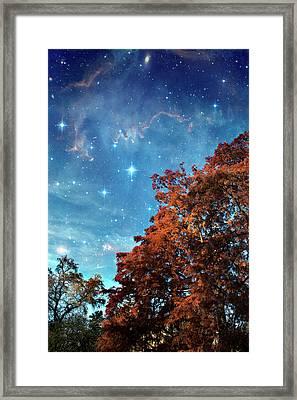 Nebula Treescape Framed Print by Paul Grand Image