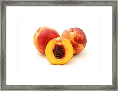 Nectarine Framed Print