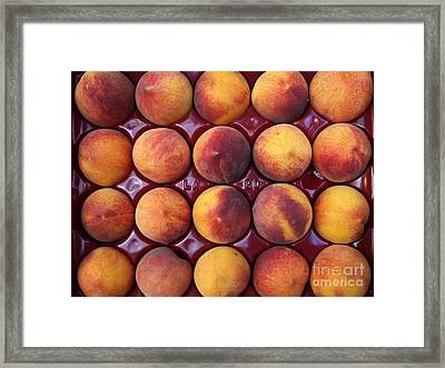 Nectarines - 5d17068 Framed Print by Wingsdomain Art and Photography