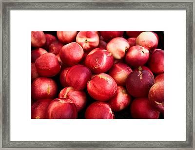 Nectarines Framed Print by Tanya Harrison