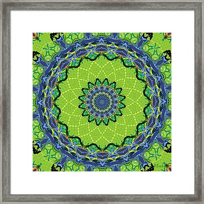 Needle And Thread Framed Print by Alec Drake