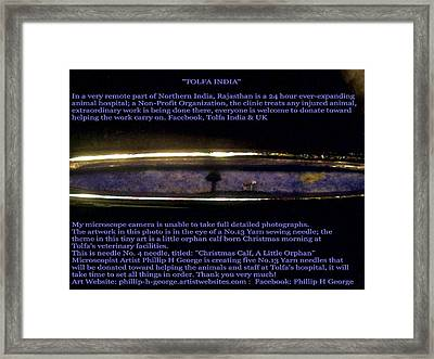Needle Four  Framed Print by Phillip H George