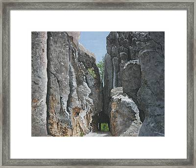 Needles Highway Framed Print by Betty-Anne McDonald