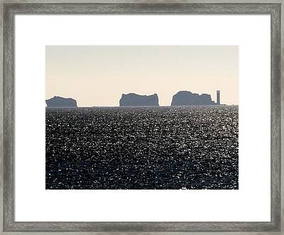 Framed Print featuring the photograph Needles by Rdr Creative
