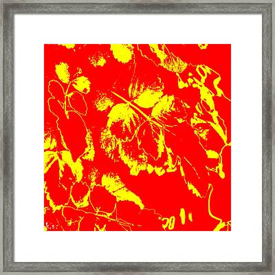 Negiot Framed Print by Keren Shiker