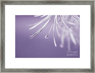 Neigerelle - 12c Framed Print