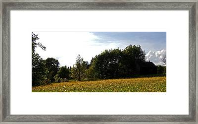 Neighbours Garden ... Framed Print by Juergen Weiss