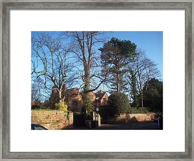 Neighbours Framed Print by Judith Desrosiers