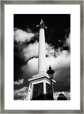 nelsons column in Trafalgar Square London England UK United kingdom Framed Print by Joe Fox