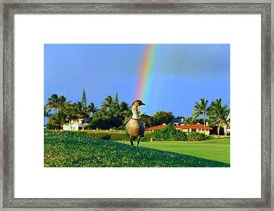 Framed Print featuring the photograph Nene At The End Of The Rainbow by Lynn Bauer
