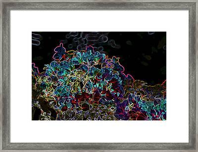 Neon Flowers Framed Print by Elizabeth  Doran