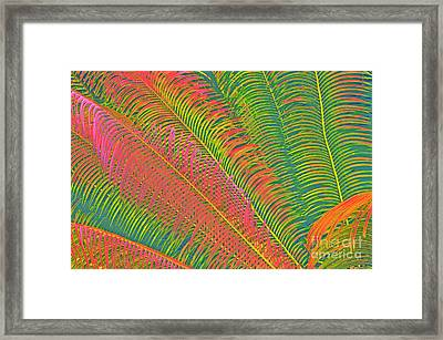 Neon Palm Abstract Framed Print by Cindy Lee Longhini
