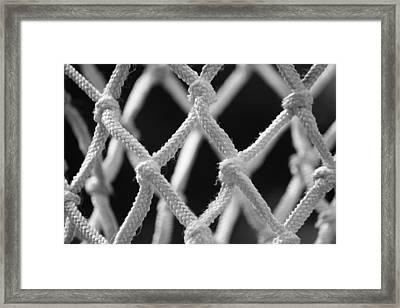 Net Worth Framed Print by Anne Babineau